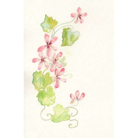 Decoration for wedding photo album, flower Geranium